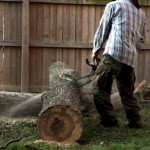 Tree Removal Yorktown VA